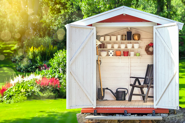 Clean and tidy shed